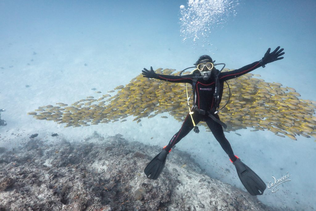 Wowie Wong and his friends go as far as inform people about the state of the underwater world