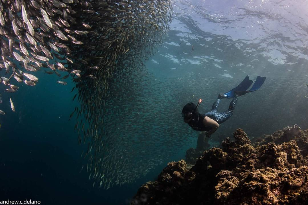 Mabel Demavivas admits that while freediving complements her triathlon, open-water swimming is a different league in and of itself