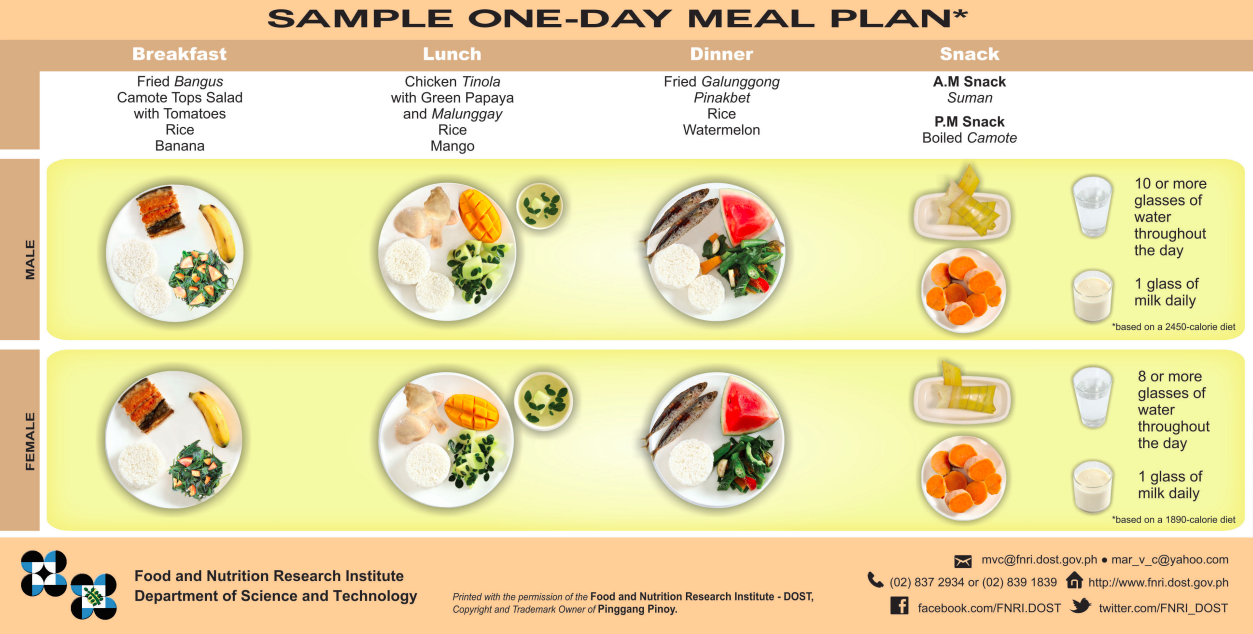 Look This Is The Recommended Food Plate For Filipinos Multisport Philippines
