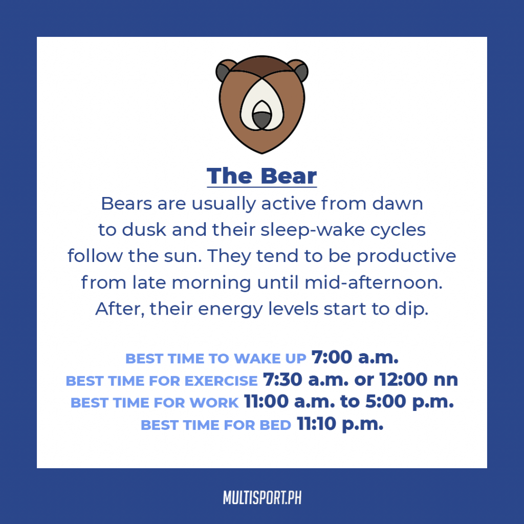 Is your sleep chronotype a bear?